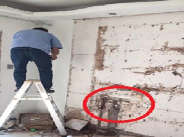 处理白蚁危害空置房屋工程