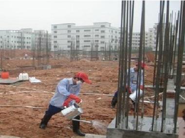 新建房屋基地白蚁预防措施