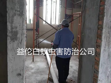 荔湾区房屋装修预防白蚁