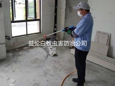 南沙房屋装修白蚁预防